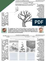 Lección No. 18 La semilla mas pequella PDF