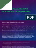 Autonomia Indigena Campesina – Cpe-Derechos