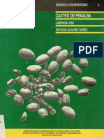 Castro de Penalba. Campaña 1983.