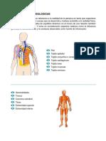 DIMENSIONES-BIOLOGICAS.docx