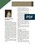 480_guideline.pdf