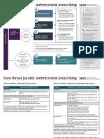 Visual Summary PDF 4723226606