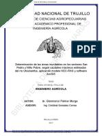 Palmer Murga, Gianmarco.pdf
