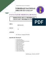 SEMINARIO-Fisiología-de-la-membrana-celular-y-membrana-basal.docx