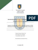 Cifuentes Urra - Novoa Pradenas - Sandoval Silva (1).pdf