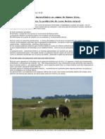 entrevista ganadería agroecológica