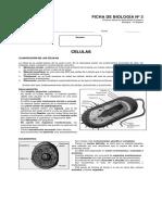 F3-Células.pdf