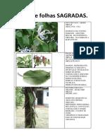 apostiladefolhassagradas-140414173421-phpapp02.pdf