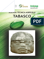 Agenda Técnica Tabasco OK