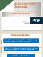 Bioinformati Ventajas y Desven
