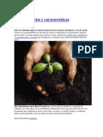 Tipos de suelos y características.docx