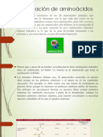 Clasificación de aminoácidos.pptx