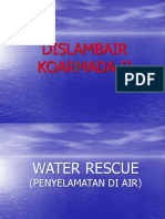 Water Rescue New