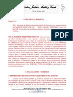 MODELO DEMANDA REPARACION DIRECTA Y NULIDAD Y RESTABLECIMIENTO
