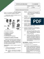 Biologia - Sistema Hormonal Humano