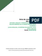 Acta de constitución - Santa Filomena.docx