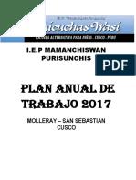 PAT preliminar 2017.docx