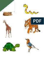 gambar hewan.docx