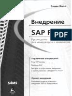 Vnedrenie_SAP-R3.pdf