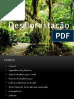 Geografia-Desflorestação-.pdf