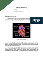 Materi Fisiologi Topik 4 Jantung pembuluh darah dan respirasi.docx
