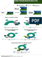Infografia Bolivia if Feb-2019