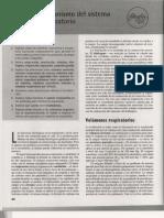 PhysioEx Ejercicio 7 Sistema Respiratorio