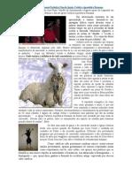 Cantora Protestante Profetiza Fim da Igreja Católica Apostólica Romana.doc
