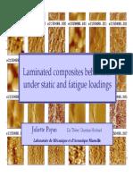 Laminated composite behaviour under stativ and fatigue loadings