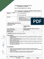 BASES CAS 002-2019 RPJN (1).pdf