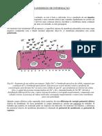 bio1_parte_09.pdf