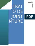 257911310 Joint Venture Monografia