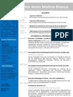CURRICULO ING  MOLINA.pdf