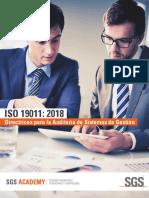 Traduccion_propia_ISO19011_18.pdf
