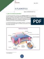 04 MEMBRANA PLASMÁTICA.docx