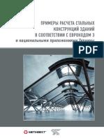 primery_rascheta_stalnyih_konstruktsiy_zdaniy_v_sootvetstvii_s_evrokodom3.pdf