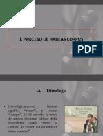 2 PPT Derecho Procesal Constitucional UDH