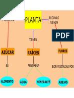 PLANTA - CUALES SON LAS PARTES DE LA PLANTA.pdf