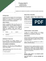 guia realización informes LABORATORIO.docx