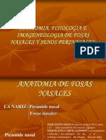 seminario de Anatomia de fosas nasales.ppt
