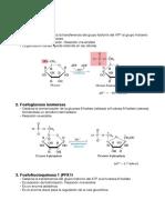 Resumen-reacciones-metabolismo-Santi-12-13.pdf