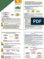 tercer grado ses 14 guia.pdf