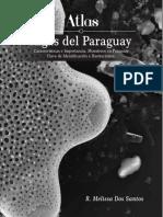 Atlas Algas del Paraguay 2016.pdf