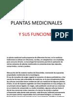 PLANTAS MEDICINALES POWER.pptx