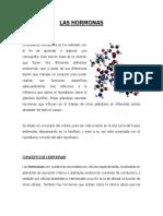 LAS HORMONAS.docx