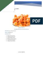 nectar de frutas informe.docx