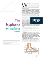 2015 - April May the Biophysics of Walking