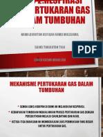 Bab 2.5 Pertukaran Gas Dalam Tumbuhan. (1)