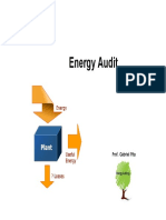 Energy Audit 2013.pdf
