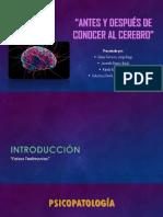 Informe del antes y después del cerebro